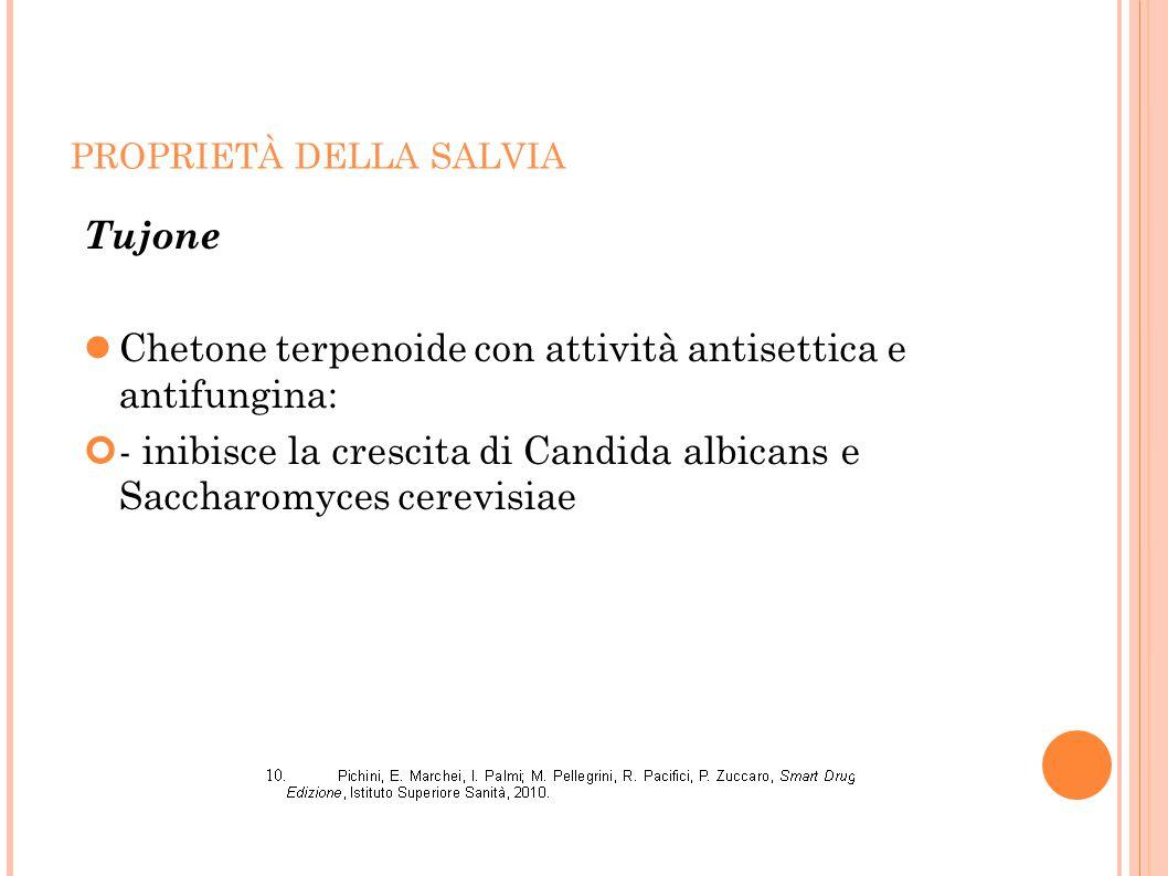 Chetone terpenoide con attività antisettica e antifungina: