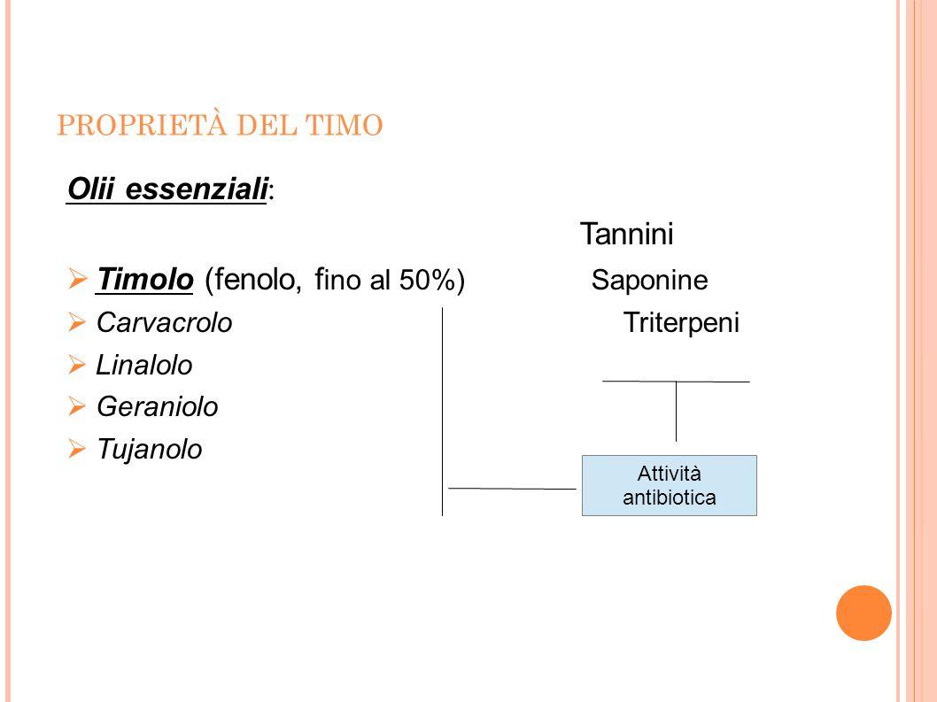 Timolo (fenolo, fino al 50%) Saponine