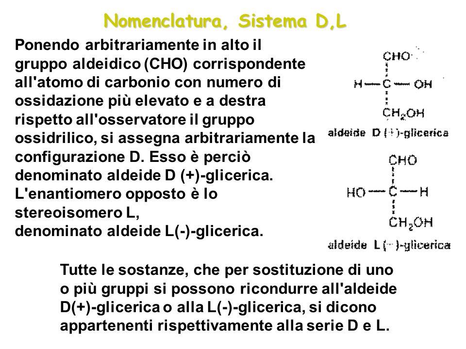 Nomenclatura, Sistema D,L