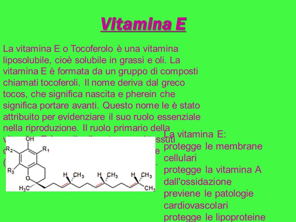 Vitamina E La vitamina E: