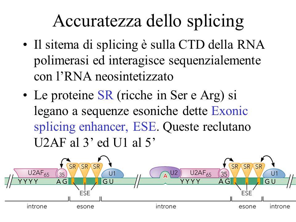 Accuratezza dello splicing