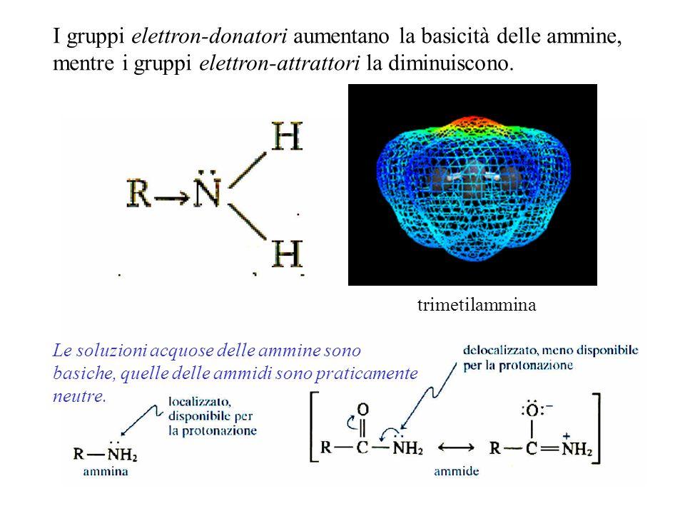 I gruppi elettron-donatori aumentano la basicità delle ammine, mentre i gruppi elettron-attrattori la diminuiscono.