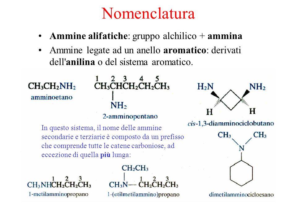Nomenclatura Ammine alifatiche: gruppo alchilico + ammina