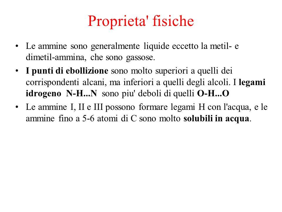Proprieta fisiche Le ammine sono generalmente liquide eccetto la metil- e dimetil-ammina, che sono gassose.