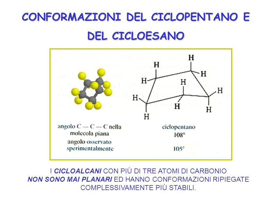 CONFORMAZIONI DEL CICLOPENTANO E DEL CICLOESANO