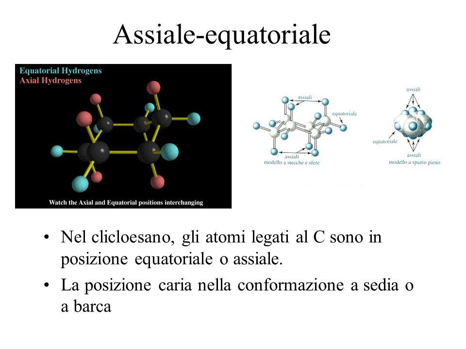 Assiale-equatoriale Nel clicloesano, gli atomi legati al C sono in posizione equatoriale o assiale.