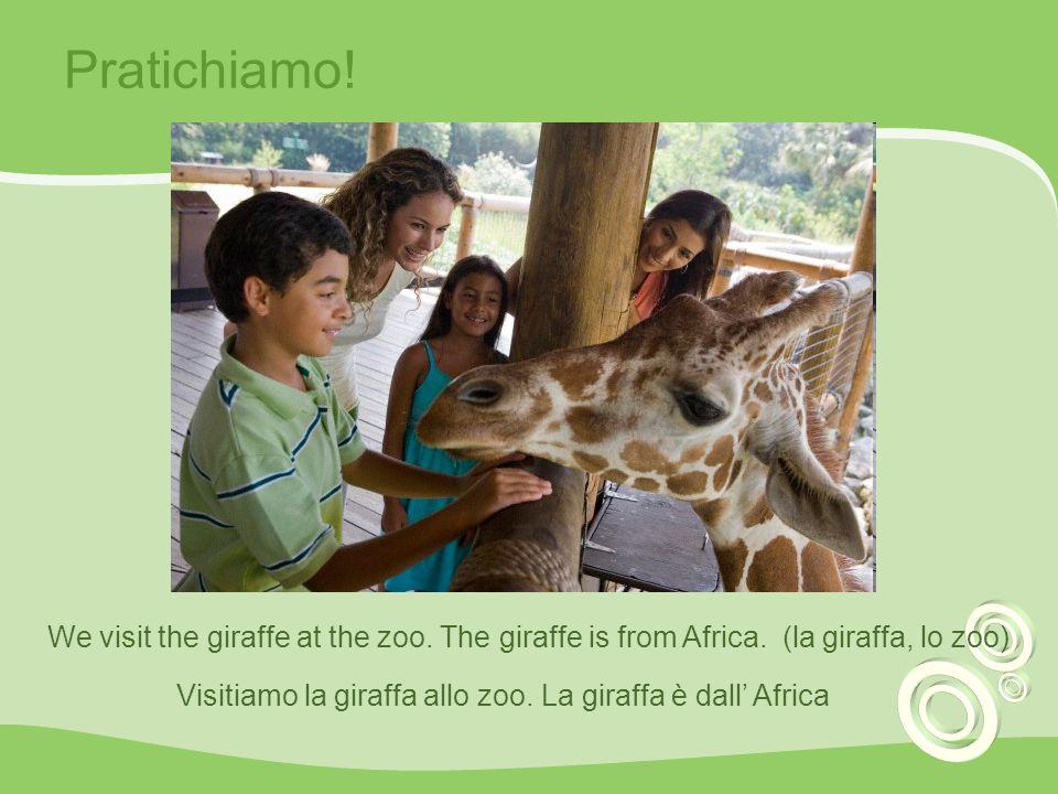 Visitiamo la giraffa allo zoo. La giraffa è dall' Africa
