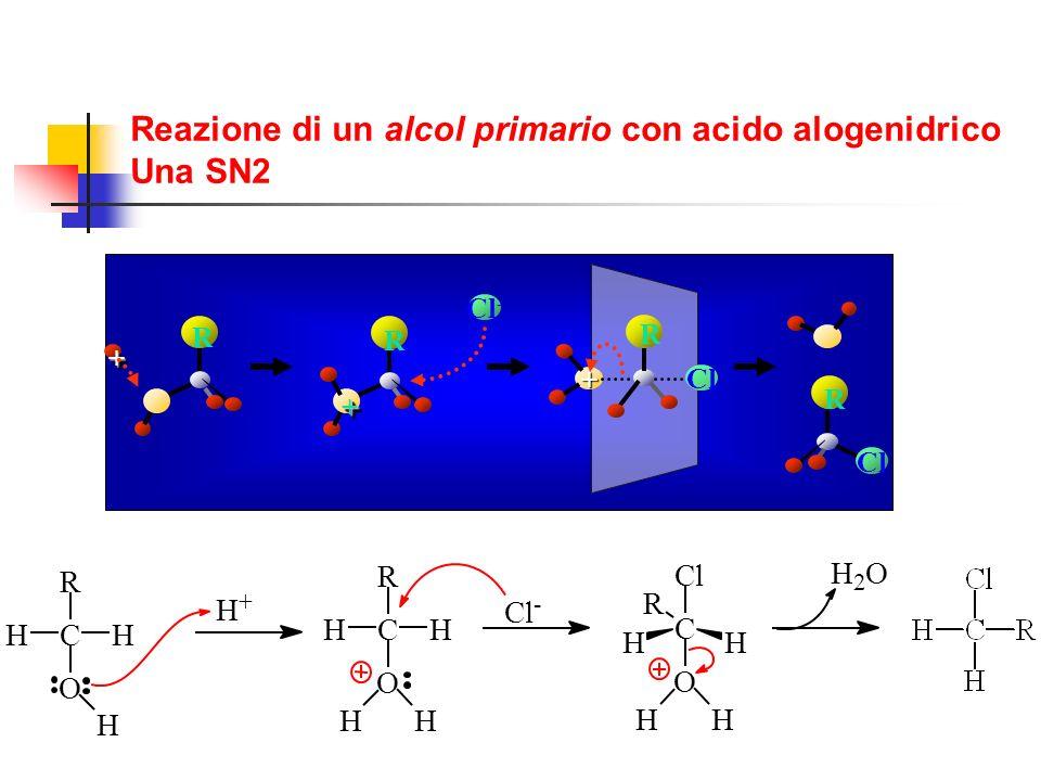 Reazione di un alcol primario con acido alogenidrico Una SN2