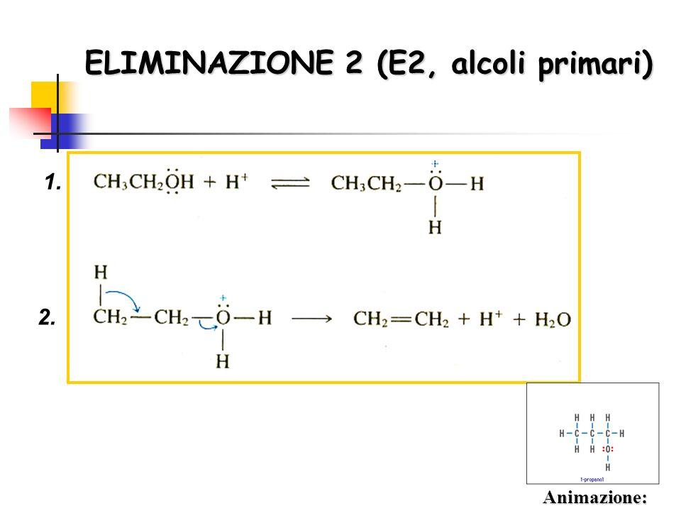 ELIMINAZIONE 2 (E2, alcoli primari)