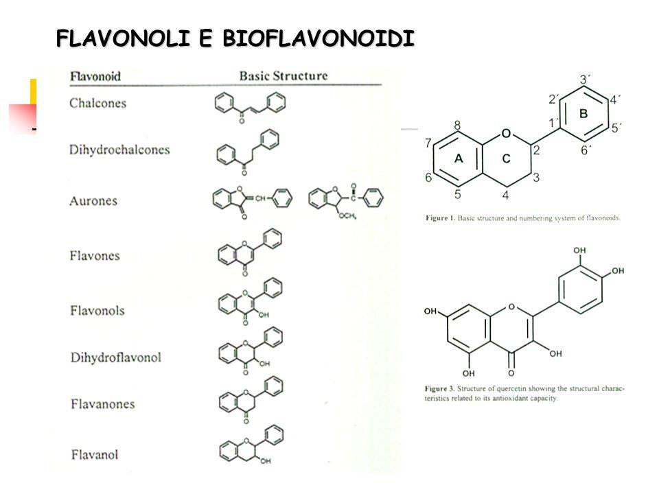 FLAVONOLI E BIOFLAVONOIDI