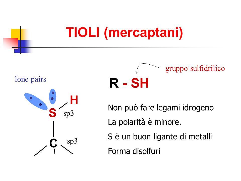 TIOLI (mercaptani) R - SH H S C gruppo sulfidrilico lone pairs