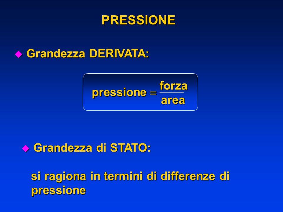 PRESSIONE Grandezza DERIVATA: pressione forza area 