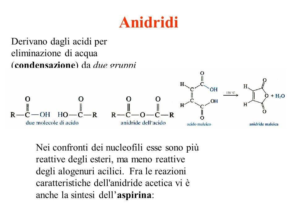 Anidridi Derivano dagli acidi per eliminazione di acqua (condensazione) da due gruppi carbossilici.