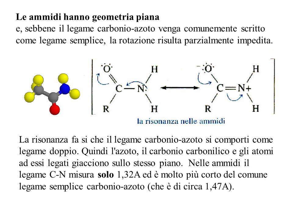 Le ammidi hanno geometria piana e, sebbene il legame carbonio-azoto venga comunemente scritto come legame semplice, la rotazione risulta parzialmente impedita.
