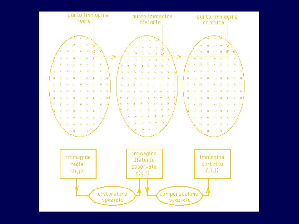 Nella figura si può osservare una griglia cartesiana distorta