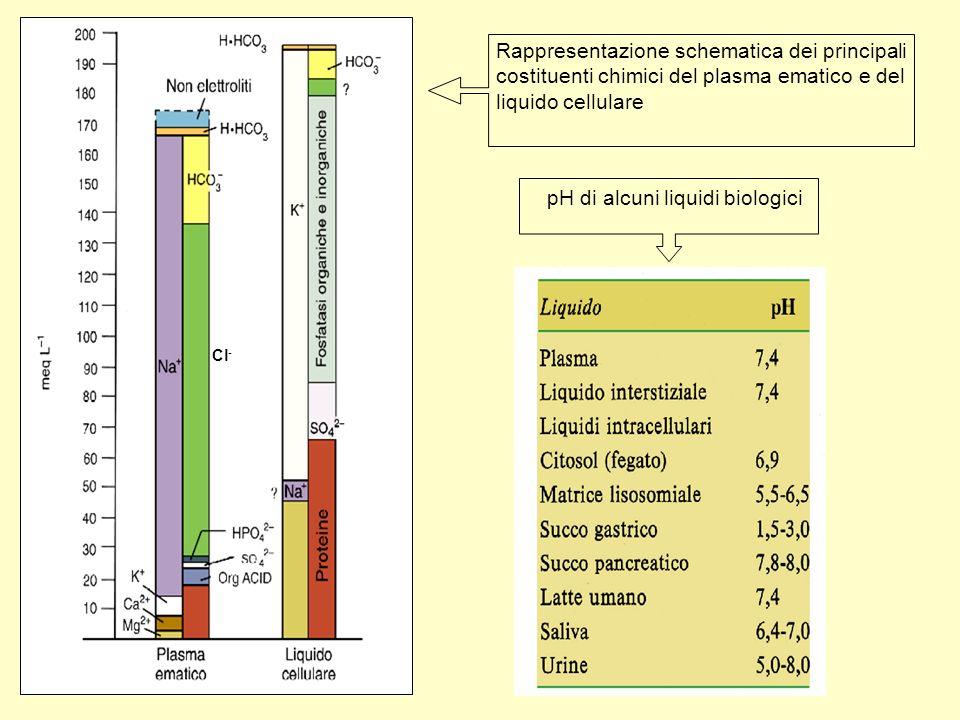 pH di alcuni liquidi biologici