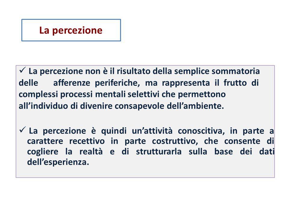 La percezione  La percezione non è il risultato della semplice sommatoria. delle afferenze periferiche, ma rappresenta il frutto di.