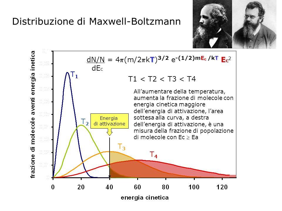 Distribuzione di Maxwell-Boltzmann