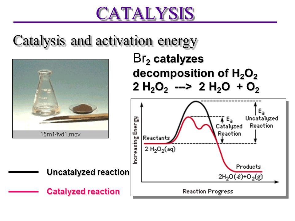 CATALYSIS Catalysis and activation energy