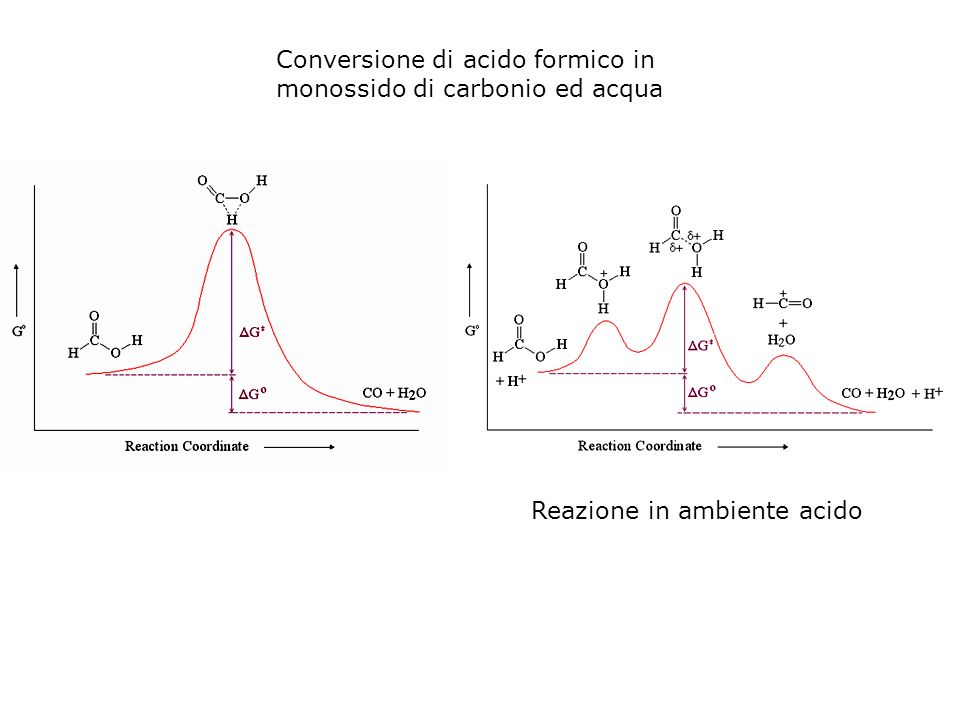 Conversione di acido formico in monossido di carbonio ed acqua