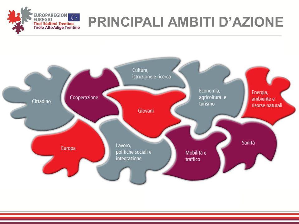 PRINCIPALI AMBITI D'AZIONE