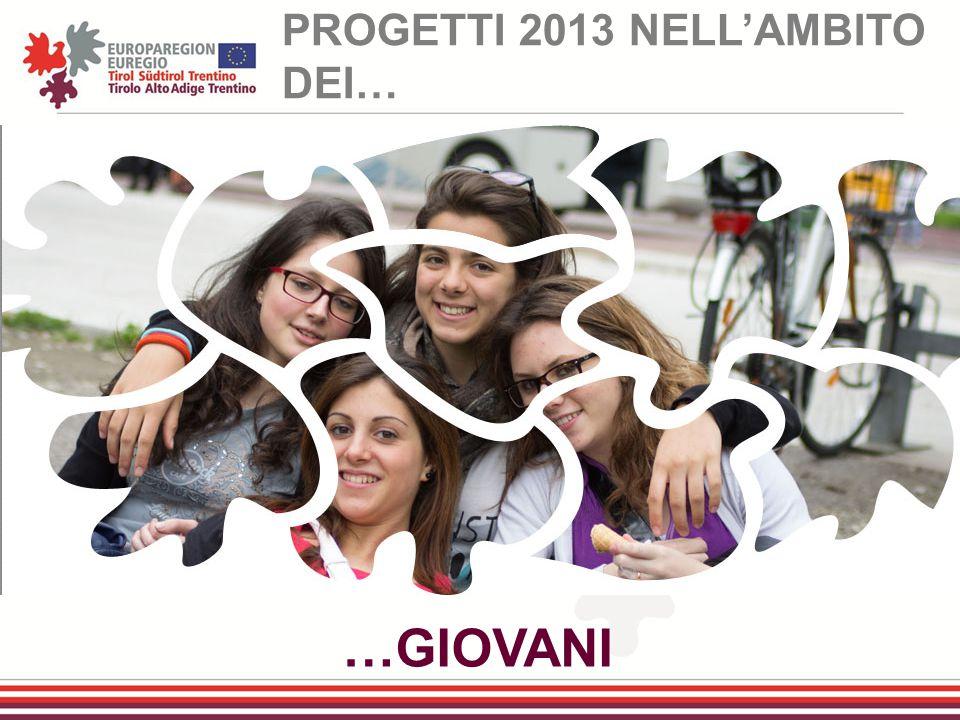 PROGETTI 2013 NELL'AMBITO DEI…