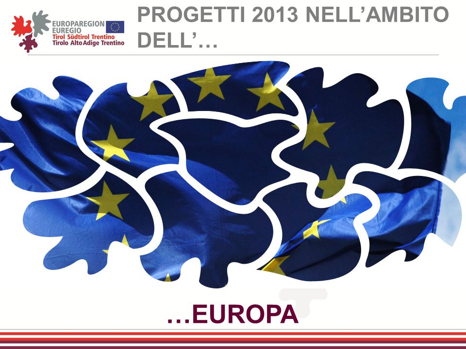 PROGETTI 2013 NELL'AMBITO DELL'…
