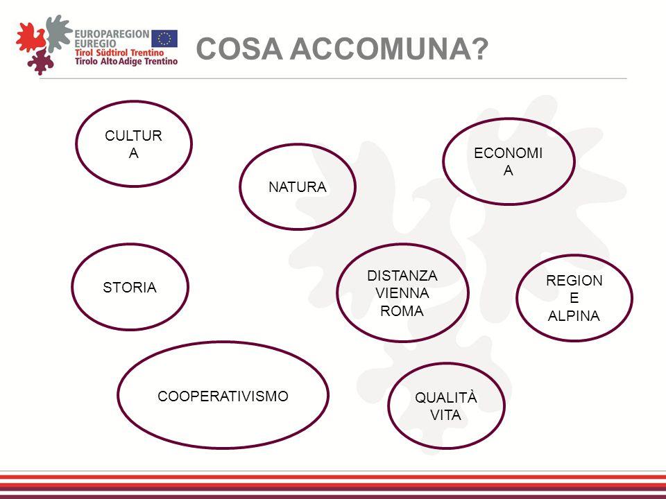COSA ACCOMUNA CULTURA ECONOMIA NATURA DISTANZA STORIA VIENNA ROMA