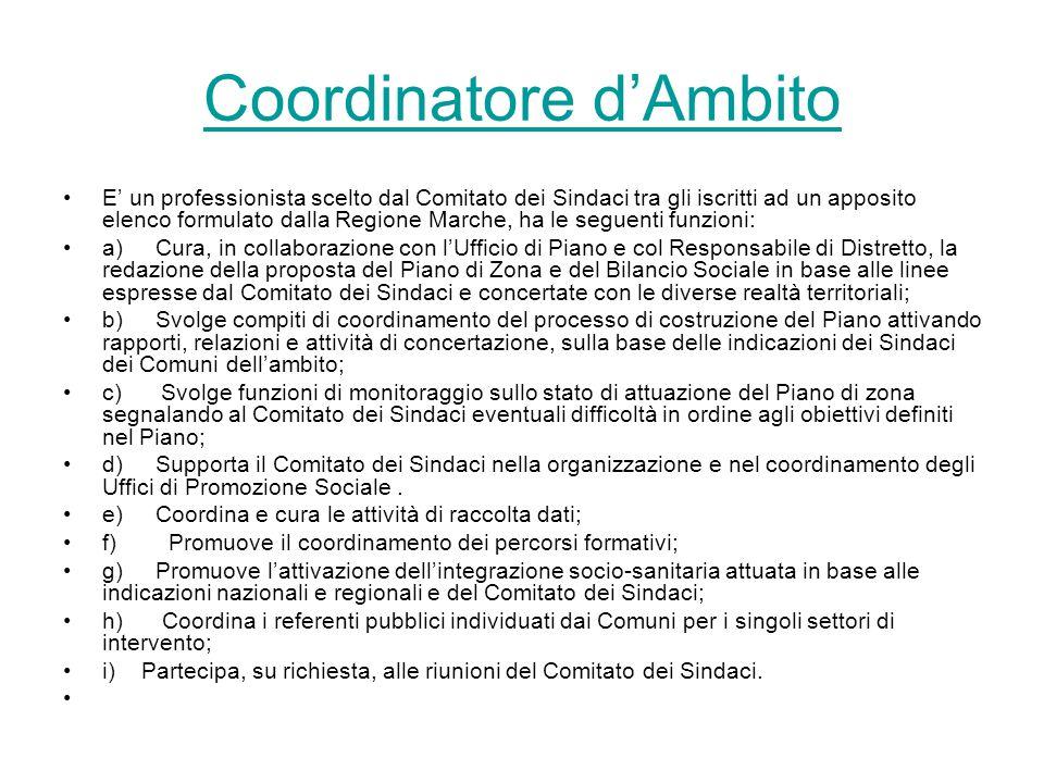 Coordinatore d'Ambito