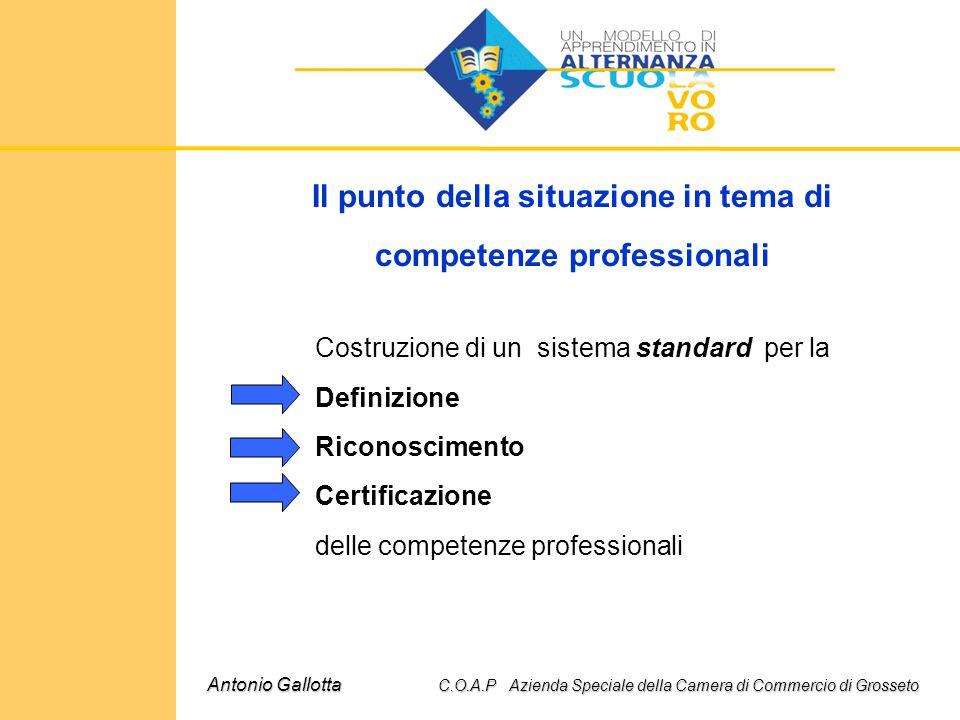 Il punto della situazione in tema di competenze professionali