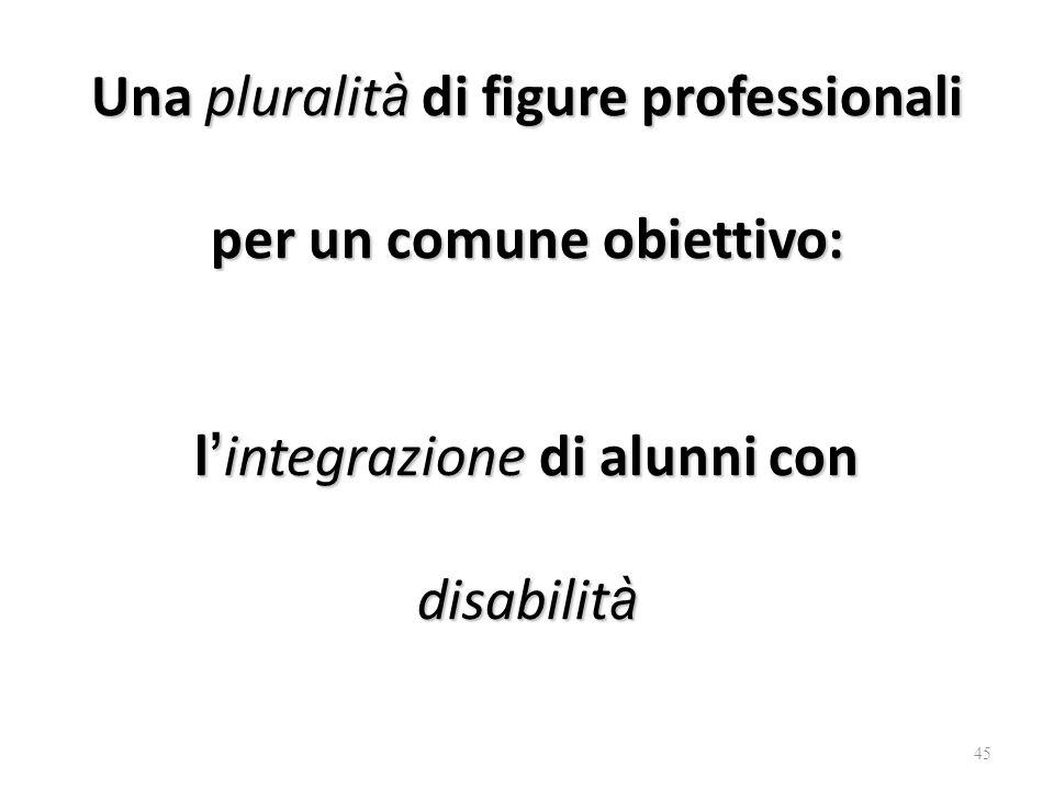 Una pluralità di figure professionali per un comune obiettivo: l'integrazione di alunni con disabilità