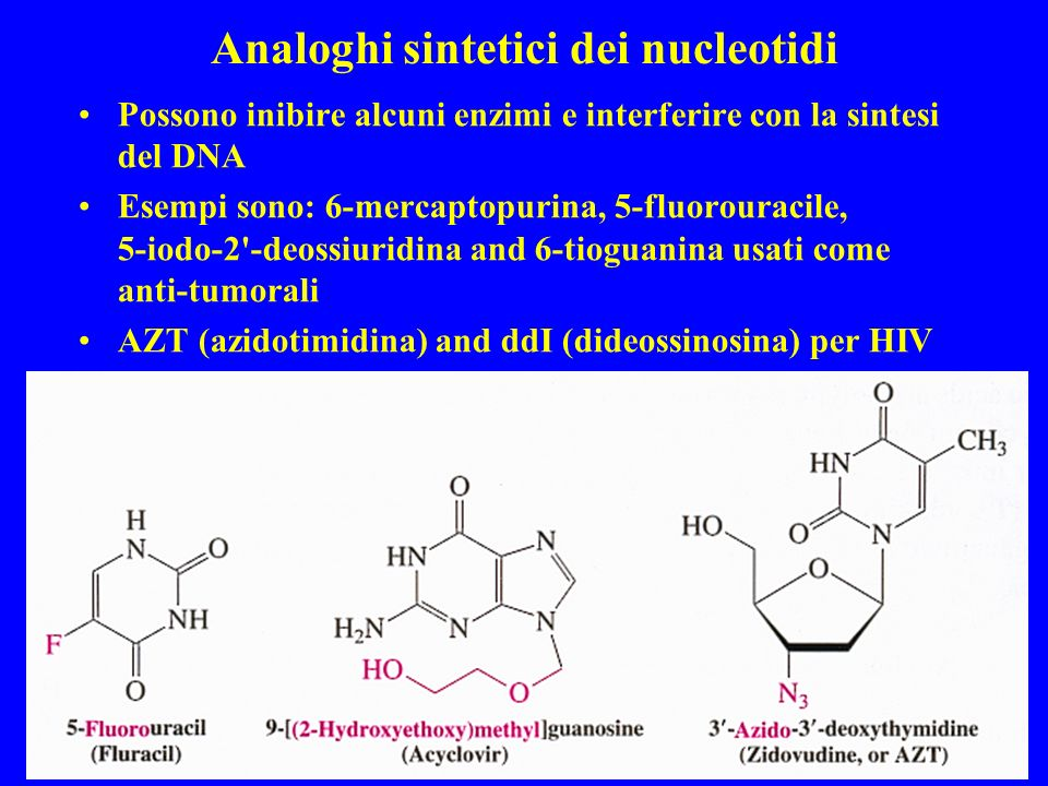 Analoghi sintetici dei nucleotidi