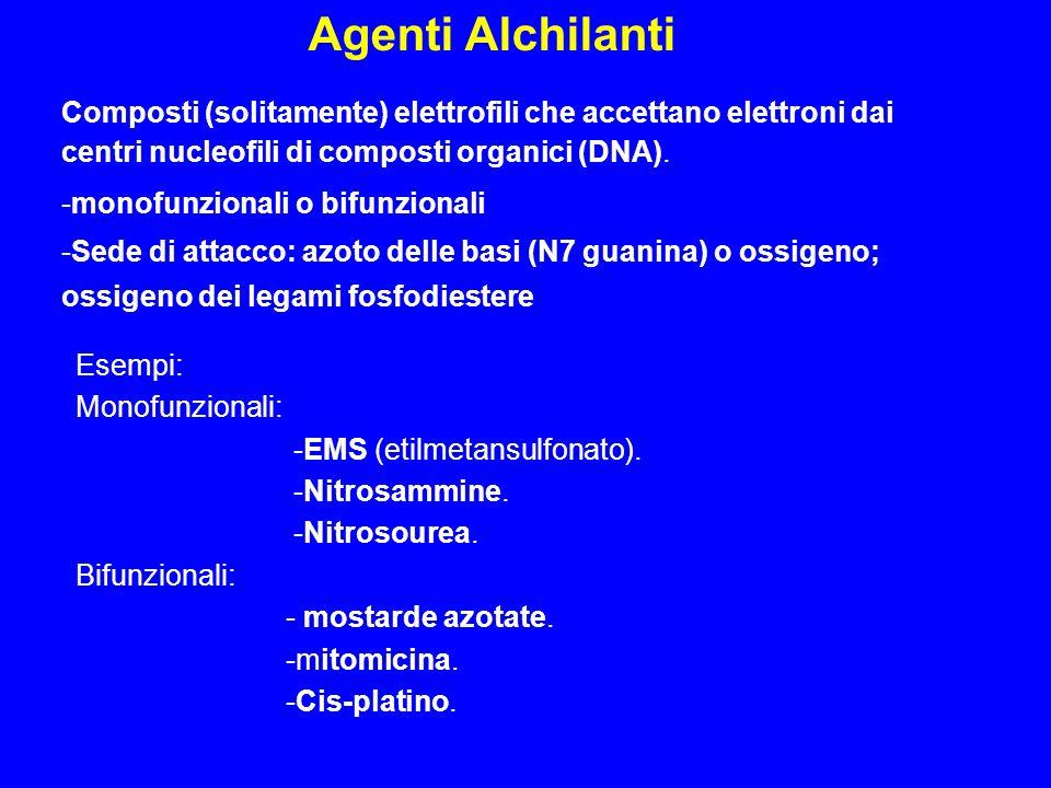 Agenti Alchilanti Composti (solitamente) elettrofili che accettano elettroni dai centri nucleofili di composti organici (DNA).