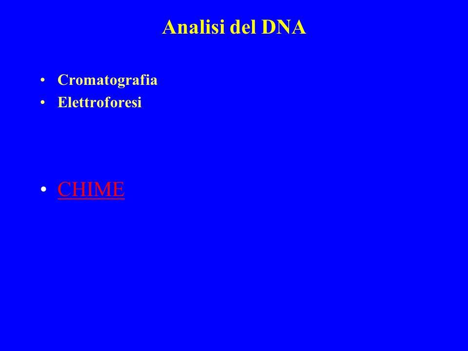 Analisi del DNA Cromatografia Elettroforesi CHIME