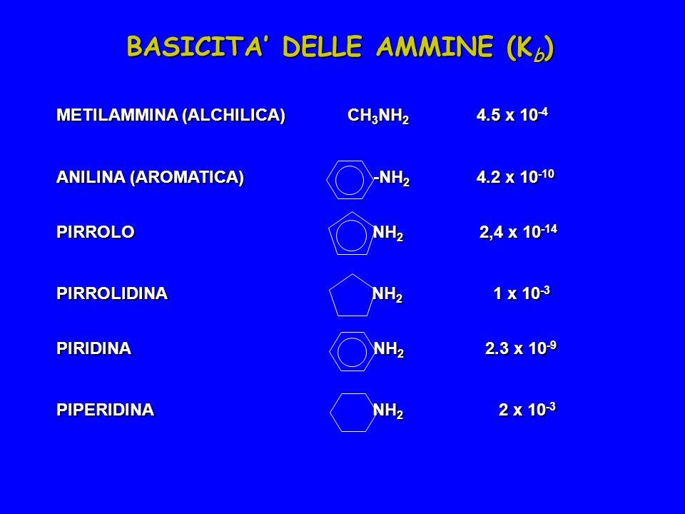 BASICITA' DELLE AMMINE (Kb)
