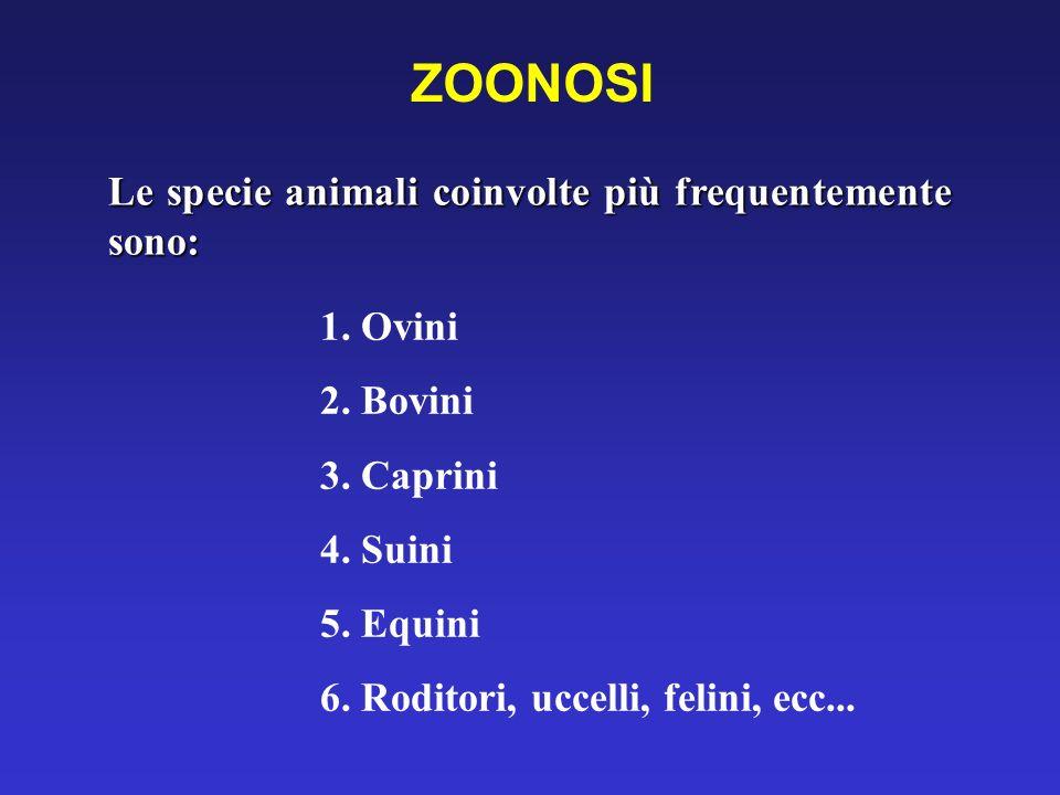 ZOONOSI Le specie animali coinvolte più frequentemente sono: 1. Ovini