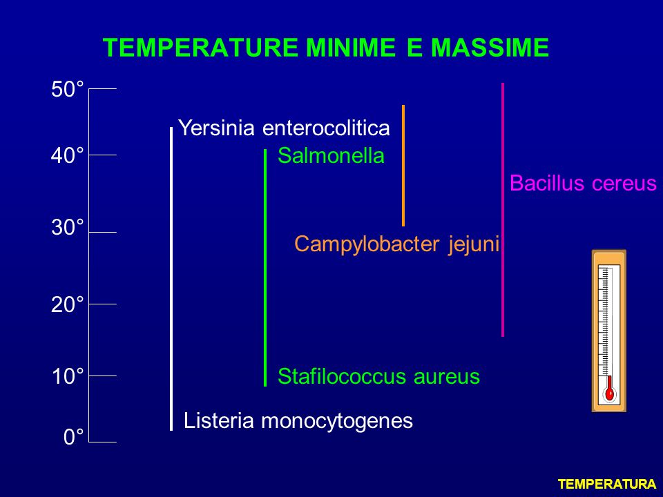 TEMPERATURE MINIME E MASSIME