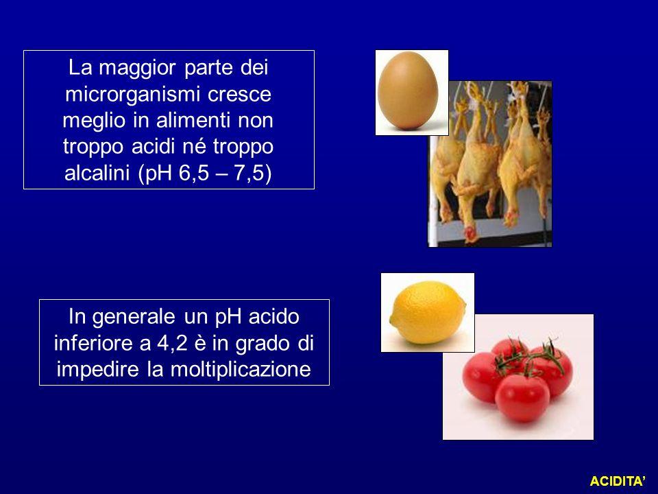La maggior parte dei microrganismi cresce meglio in alimenti non troppo acidi né troppo alcalini (pH 6,5 – 7,5)