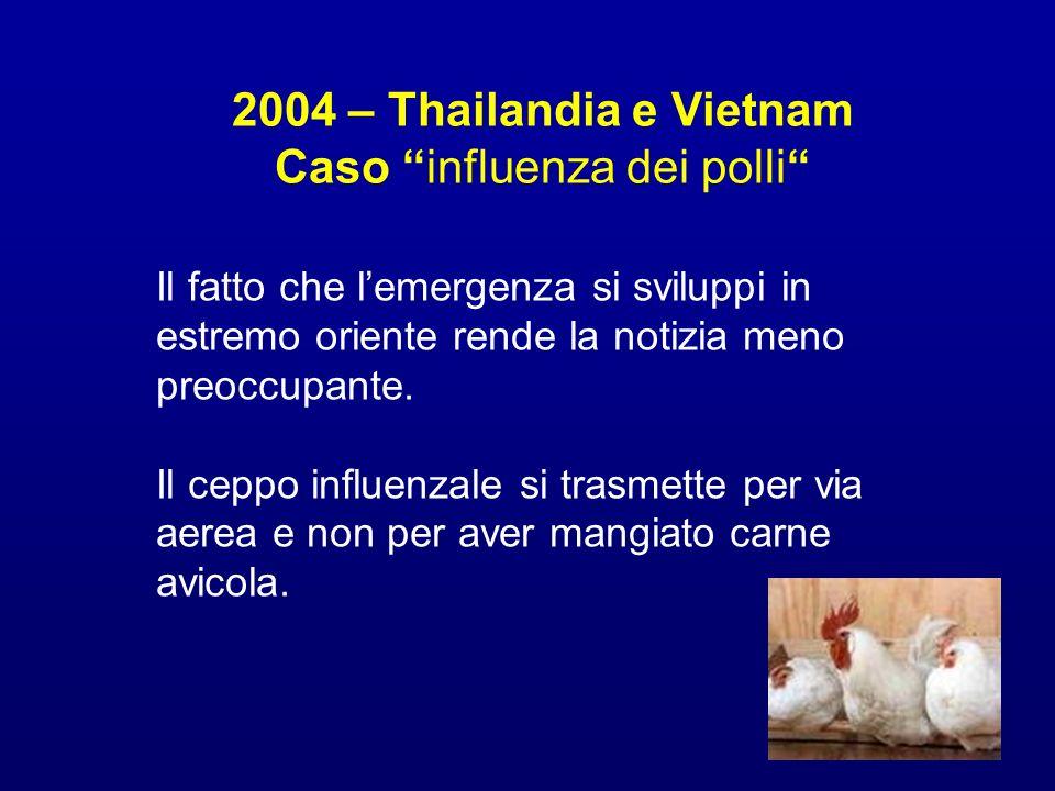 2004 – Thailandia e Vietnam Caso influenza dei polli
