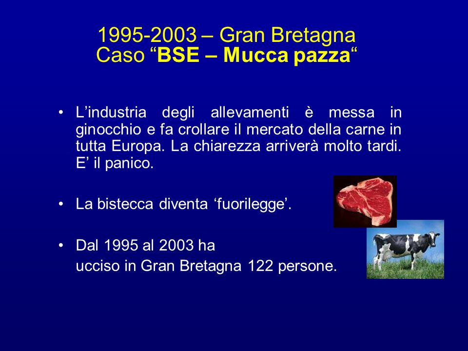 1995-2003 – Gran Bretagna Caso BSE – Mucca pazza