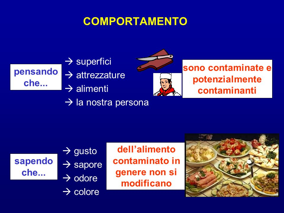 COMPORTAMENTO superfici attrezzature