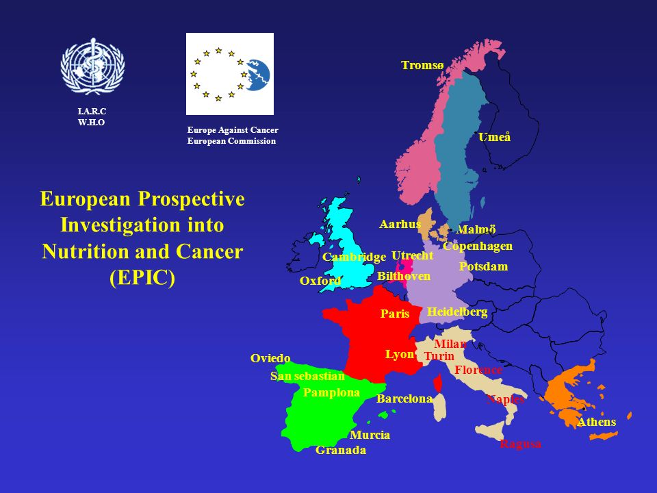 European Prospective Investigation into Nutrition and Cancer (EPIC)