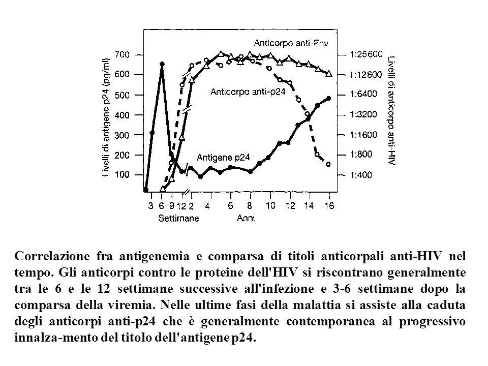 Correlazione fra antigenemia e comparsa di titoli anticorpali anti-HIV nel tempo.