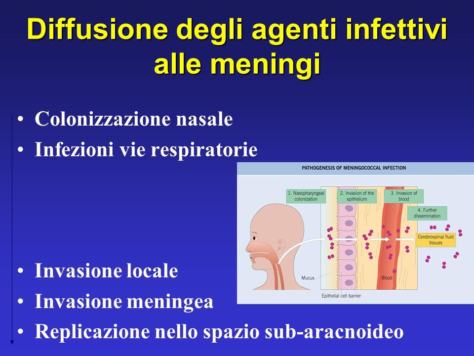 Diffusione degli agenti infettivi alle meningi