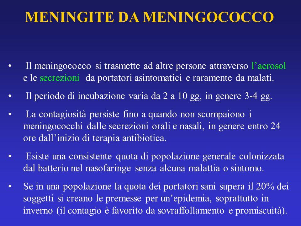 MENINGITE DA MENINGOCOCCO