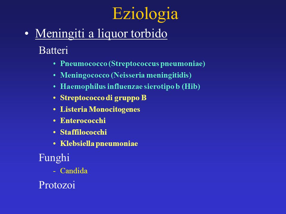 Eziologia Meningiti a liquor torbido Batteri Funghi Protozoi