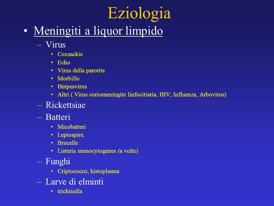Eziologia Meningiti a liquor limpido Virus Rickettsiae Batteri Funghi
