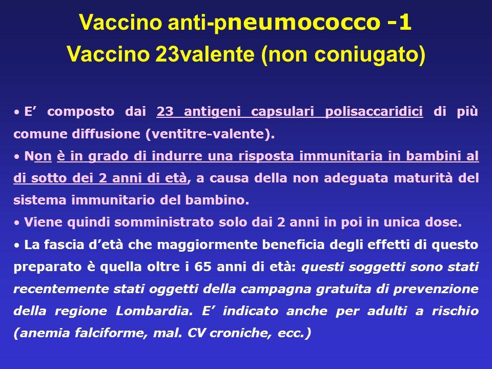 Vaccino anti-pneumococco -1 Vaccino 23valente (non coniugato)