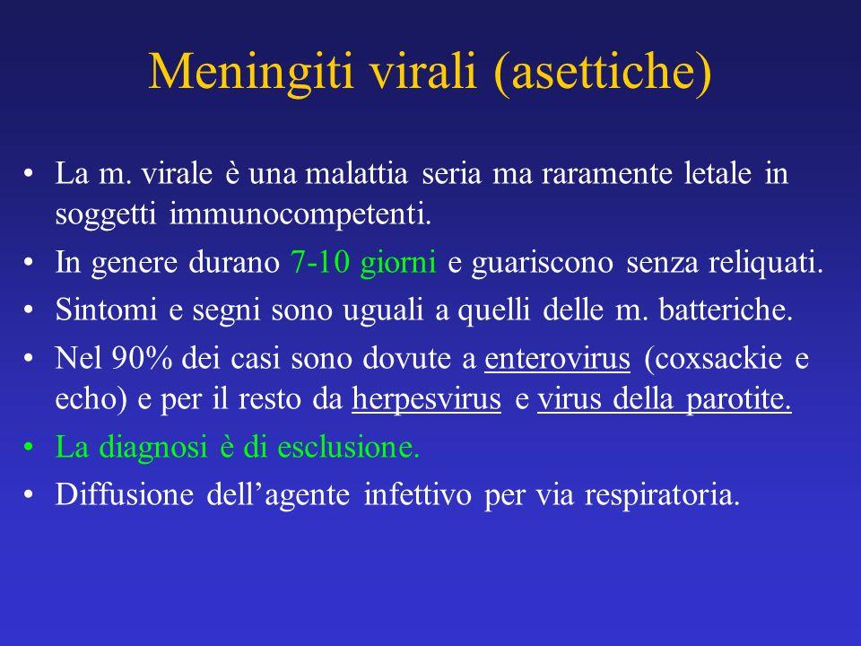 Meningiti virali (asettiche)