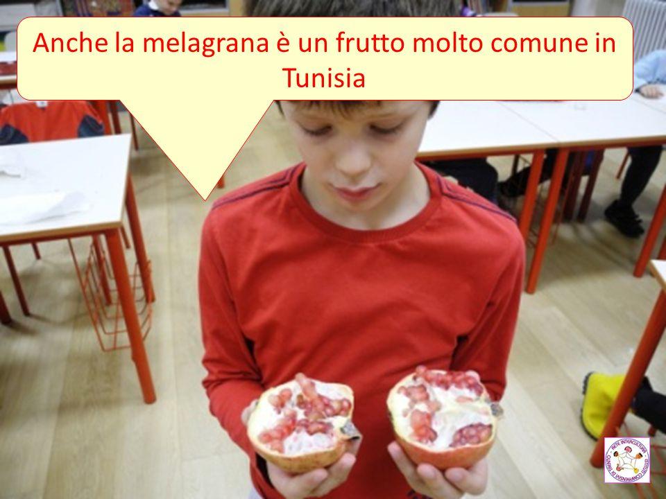 Anche la melagrana è un frutto molto comune in Tunisia
